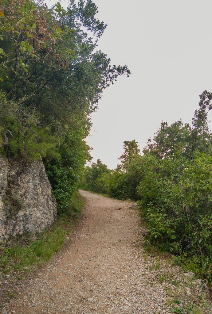 Beigefarbener Sand- und Schotterweg zwischen grünen Büschen
